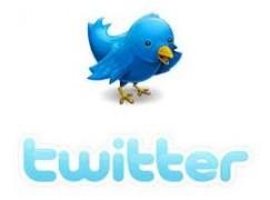 twitter kullanıcı üye resimleri